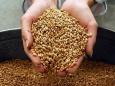 C 1 января 2012 г. всем Российским зерном будет распоряжаться «Голдман Сакс»