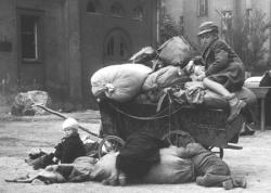 Немцы: изгнаны и убиты