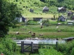 Будущее русской деревни