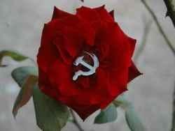 Реставрация капитализма на территории СССР является временной