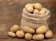 О нежной любви немцев к картофелю