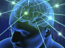 Разовый прием антидепрессанта изменяет структуру мозга