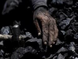 Яценюка поймали на угольных откатах