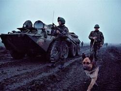 Полезные советы от ветеранов боевых действий
