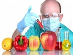 ГМО - заражение другого вида аналогами раковых клеток