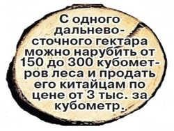 Кто и как воруют русский лес