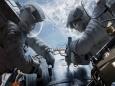 Размножение в космосе: последний рубеж