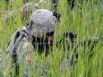 США приступают к более масштабным военным учениям