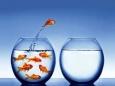 Чем уверенные в себе люди отличаются от остальных