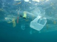 Создано девять миллиардов тонн пластика