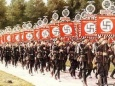 Где нацистские символы запрещены