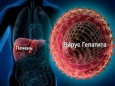 Вирусный гепатит С: основные симптомы и современные способы лечения