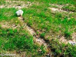 Феномен движущихся камней в Беларуси
