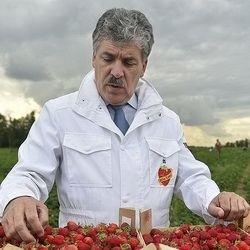 Павел Грудинин составит конкуренцию Путину