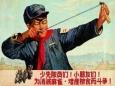 Как природа отомстила Китаю за воробьёв