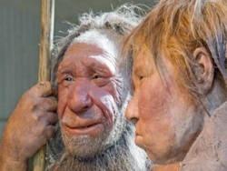 В Европе решили клонировать мозг неандертальца