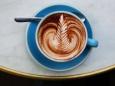 Учёные используют кофеин для управления генами