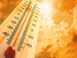 Как вести себя при жаре