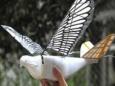 Птицы дроны испытаны в Китае