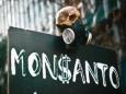 У Monsanto начинаются крупные неприятности