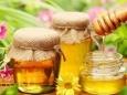 От кашля вместо антибиотиков мёд