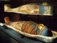 Какое ДНК у египетских мумий
