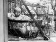Как англичанки начала 20-го века растили детей