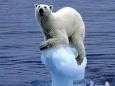 Углекислый газ и мировой океан