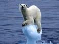Новое исследование глобального потепления