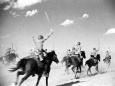 Животные на службе в Красной Армии