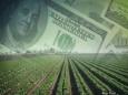 Какие проблемы у американских фермеров