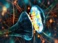 Физическая подготовка и работа мозга