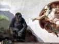 Новая гипотеза происхождения человечества