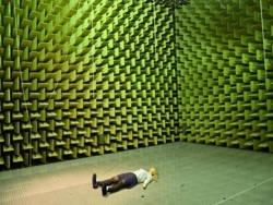 Мозг человека в звуконепроницаемой комнате