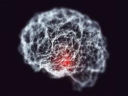 Парадоксы мозга через когнитивные искажения
