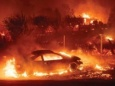 Пожары - это будущее в потеплевшем мире
