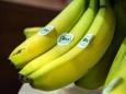 Органические продукты: польза или обман?