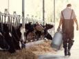 Кризис для молочной отрасли США