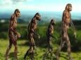 Древние люди были вегетарианцами?