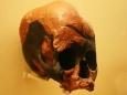 Африканцы оказались старше на 100 тысяч лет
