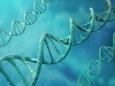 Генетика на службе уголовного кодекса