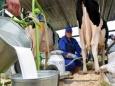 Что происходит с сельским хозяйством России