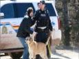Канадский стрелок убил по меньшей мере 17 человек