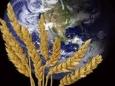Поставки продовольствия в мире начинают ухудшаться