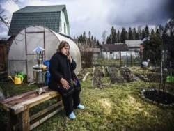 Для многих россиян скромная дача стала надежным убежищем