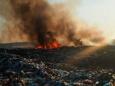 В Ленинградской области горят высокотоксичные свалки