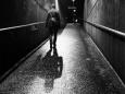 Треть американцев демонстрируют признаки депрессии