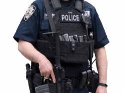 Реформа полиции глазами американцев