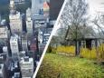 Выборы в Беларуси как конфликт города и деревни
