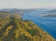 Путин разрешил вырубать байкальские леса